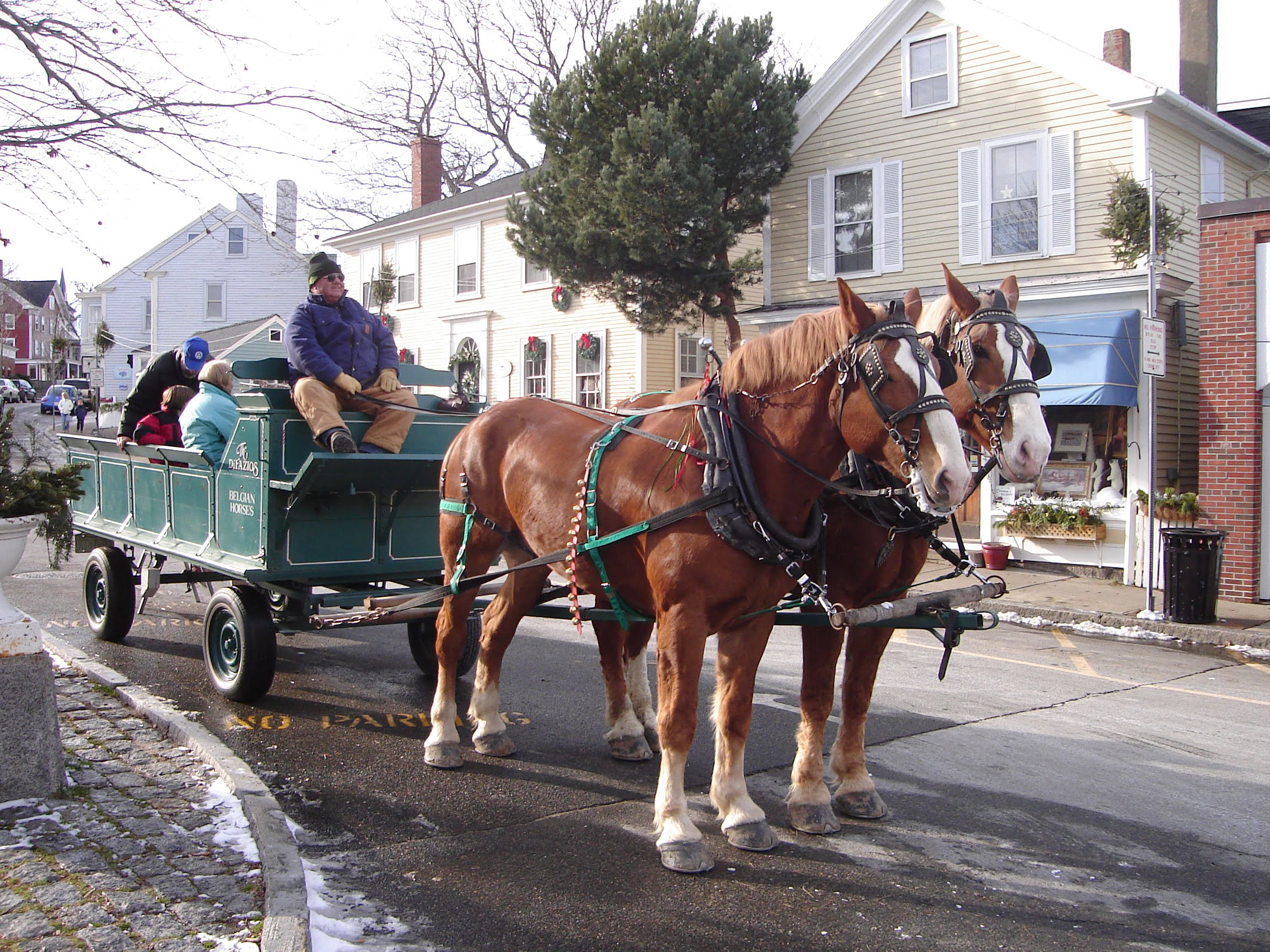 Christmas In Rockport Ma 2020 Horse Drawn Holiday Carriage Rides | Rockport, MA USA